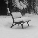 Alter Johannisfriedhof im Winter